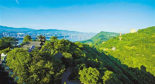 重庆长江两岸森林覆盖率达50.2%