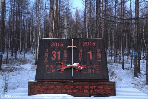 最大国有林区停伐之后