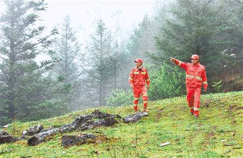 云南实施天然林保护工程20年纪实
