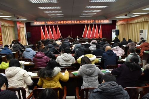 桉树中心专家赴广西国有黄冕林场开展技术培训