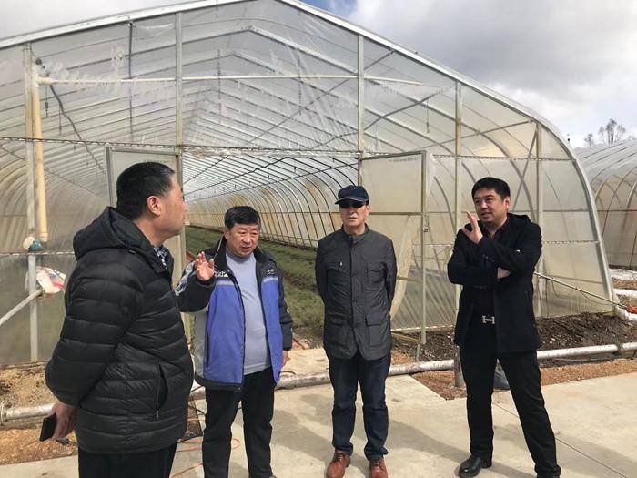 中国林科院寒温带林业研究中心赴阿龙山林业局开展合作交流